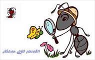 پاورپوینت الگوریتم کلونی مورچه و زنبور عسل،